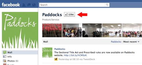 Like Paddocks Facebook page
